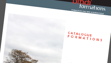 infographiste metteur en adolescent lyon – Formations webmaster, PAO, photographe, Poitiers, Châtellerault, Niort (Vienne, 86)